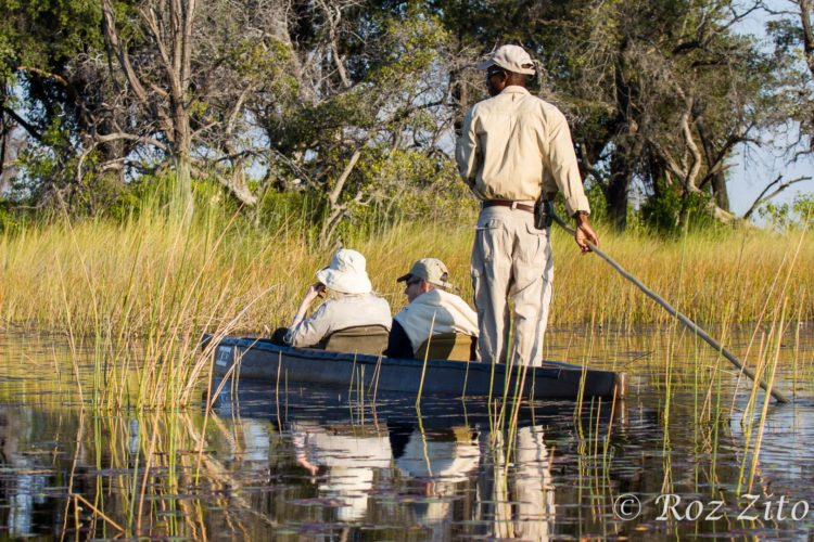 Wetlands, little vumbura, okavango delta, botswana safaris, canoeing safaris and kayaking holidays