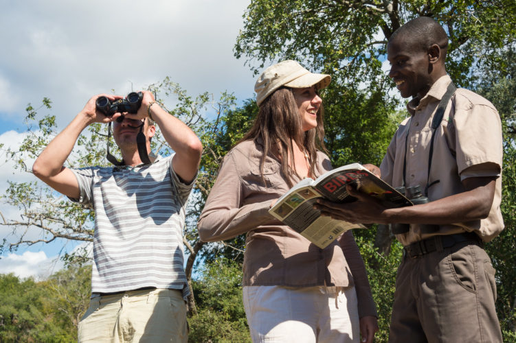 Malawi holidays walking safari Majete