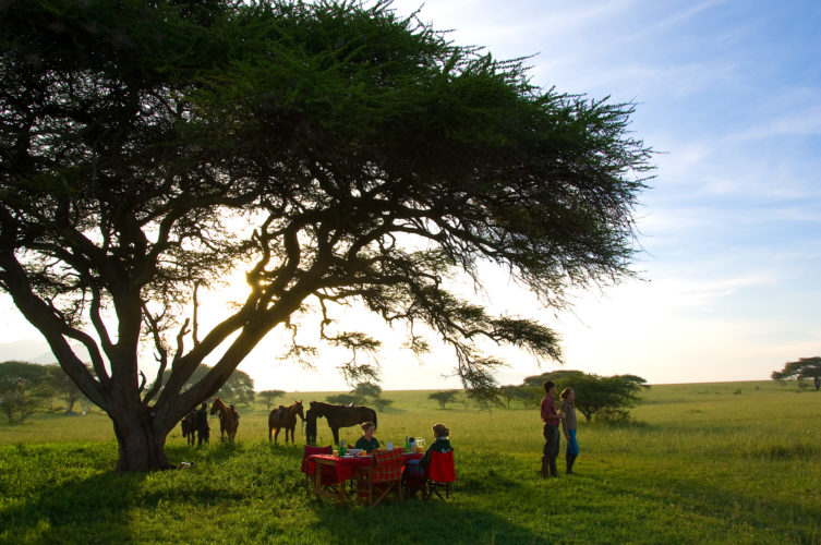 horse riding safaris in africa, kenya safaris, kenya horse riding safaris, dining