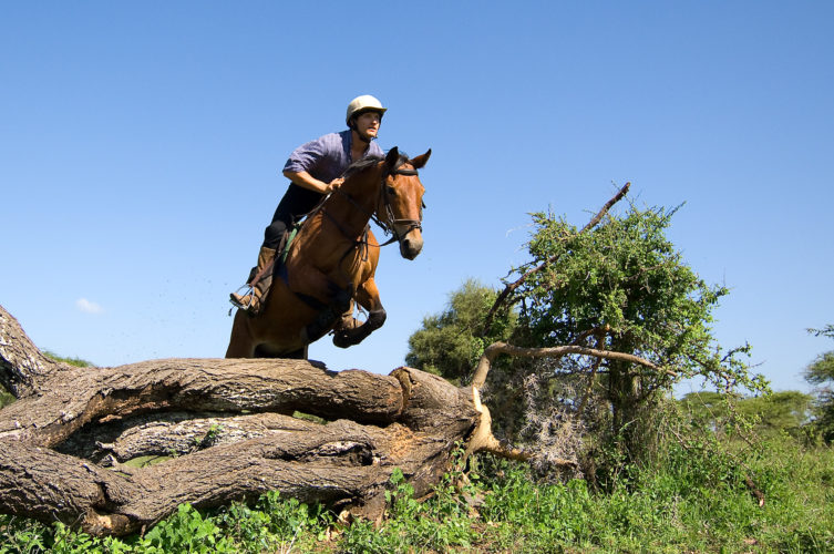 horse riding safaris in africa, kenya safaris, kenya horse riding safaris