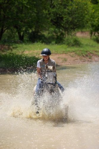 Horse riding safaris in Africa, wildlife safaris
